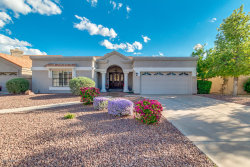 Photo of 3909 E Hiddenview Drive, Phoenix, AZ 85048 (MLS # 5836679)