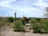 Photo of 345 E Thurber Road, Wickenburg, AZ 85390 (MLS # 5845897)