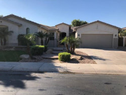 Photo of 4556 S Buckskin Way, Chandler, AZ 85249 (MLS # 5845970)