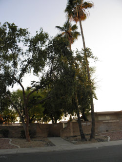 Photo of 10749 W Santa Fe Drive, Sun City, AZ 85351 (MLS # 5854624)