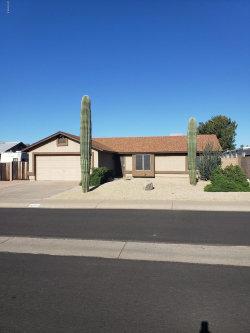 Photo of 1102 N 94th Street, Mesa, AZ 85207 (MLS # 5914791)