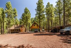 Photo of 1769 N Lance Drive, Parks, AZ 86018 (MLS # 5967836)