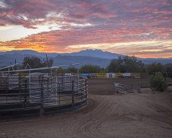 Photo of 27515 N 160th Street, Scottsdale, AZ 85262 (MLS # 5981494)