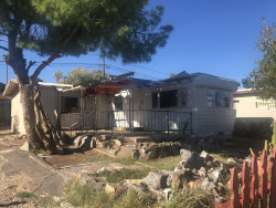 Photo of 13036 N 20th Street, Phoenix, AZ 85022 (MLS # 6007269)