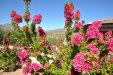 Photo of 41621 N 54th Street, Cave Creek, AZ 85331 (MLS # 6012904)