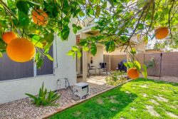 Photo of 656 N Terrace Road, Chandler, AZ 85226 (MLS # 6025887)
