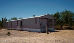 Photo of 23229 E Tiny Trail Trail, Florence, AZ 85132 (MLS # 6026842)