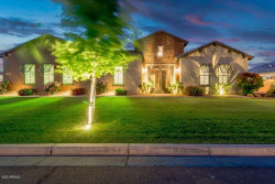 Photo of 17660 E Appaloosa Court E, Queen Creek, AZ 85142 (MLS # 6051217)