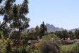 Photo of 12212 N Paradise Village Parkway, Unit 428, Phoenix, AZ 85032 (MLS # 6062659)