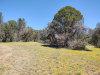 Photo of 196 W Westridge Drive, Young, AZ 85554 (MLS # 6075778)