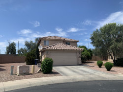 Photo of 13026 W Paradise Drive, El Mirage, AZ 85335 (MLS # 6078399)