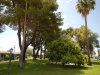 Photo of 10432 W Oakmont Drive, Sun City, AZ 85351 (MLS # 6099017)