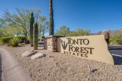 Photo of 11355 E Minton Street, Mesa, AZ 85207 (MLS # 6101129)