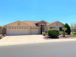 Photo of 10829 E Olla Avenue, Mesa, AZ 85212 (MLS # 6115690)