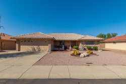 Photo of 11010 E Lindner Avenue, Mesa, AZ 85209 (MLS # 6138277)