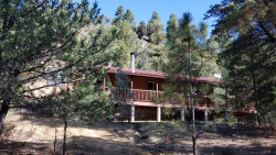 Photo of 152 E Nail Ranch Road, Young, AZ 85554 (MLS # 6138439)