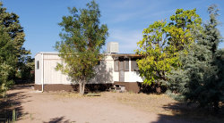 Photo of 164 N Party Lane, Young, AZ 85554 (MLS # 6147738)