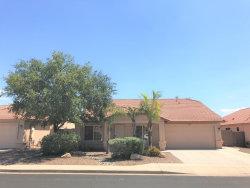 Photo of 11251 E Downing Street, Mesa, AZ 85207 (MLS # 5644034)