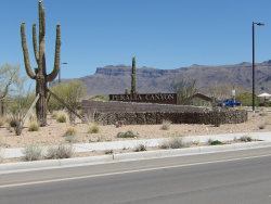 Photo of 12919 E Massai Point, Gold Canyon, AZ 85118 (MLS # 6082730)