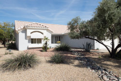 Photo of 22509 N Homestead Lane, Sun City West, AZ 85375 (MLS # 6109868)