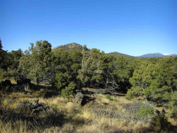 Photo of 0 Stone Cabin Rd, Santa Fe, NM 87505 (MLS # 201801718)