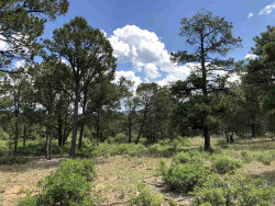 Photo of 58 Silver Feather Trail , Lot 11, Pecos, NM 87552 (MLS # 201903805)