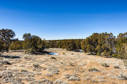 Photo of 4 Bluebonnet Circle, Santa Fe, NM 87506 (MLS # 202000604)