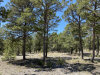 Photo of 10 Wild Wings Circle, Pecos, NM 87552 (MLS # 202001430)