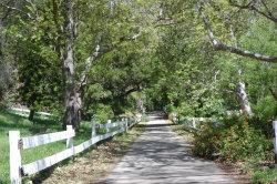 Photo of 7804 Stanley Park Road, Carpinteria, CA 93013 (MLS # 1700123)