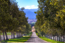 Photo of 4101 Roblar Avenue, Santa Ynez, CA 93460 (MLS # 18002852)