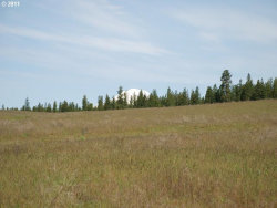 Photo of Thompson RD , Unit 2, Goldendale, WA 98620 (MLS # 11299345)