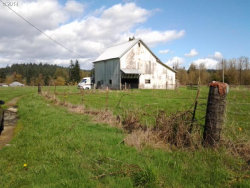 Photo of 0 Mulino RD, Mulino, OR 97042 (MLS # 14131837)