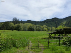 Photo of 0 LOON LAKE RD, Reedsport, OR 97467 (MLS # 17398435)
