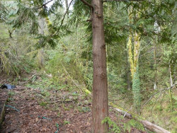 Photo of 26543 NW ST HELENS HWY, Scappoose, OR 97056 (MLS # 18016505)