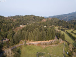 Photo of 1001 Cedar Valley, Gold Beach, OR 97444 (MLS # 18145342)
