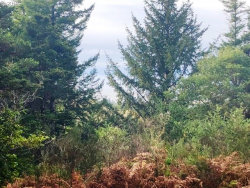 Photo of Dee Terrace, Port Orford, OR 97465 (MLS # 18295836)