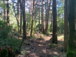 Photo of Old Mill Road, Port Orford, OR 97465 (MLS # 19019187)