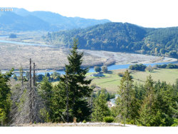 Photo of 95515 TUTUTNI HOLLOW RD, Gold Beach, OR 97444 (MLS # 19143448)