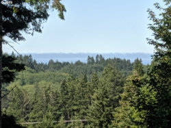 Photo of 28339 HUNTER CREEK HTS, Gold Beach, OR 97444 (MLS # 19212223)
