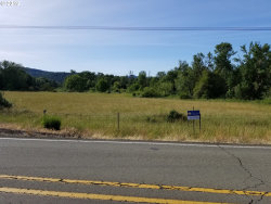 Photo of 0 ROCHESTER BRIDGE RD, Oakland, OR 97462 (MLS # 19241072)