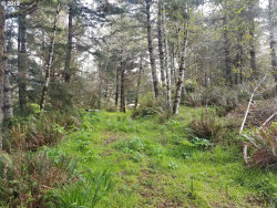 Photo of 29 Grouse, Langlois, OR 97450 (MLS # 19256401)