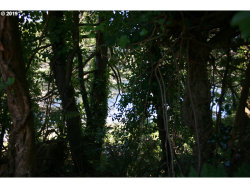 Photo of 42392 GARRISON LAKE RD, Port Orford, OR 97465 (MLS # 19310510)