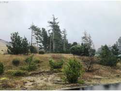 Photo of DUNEWOOD DR , Unit 93, Florence, OR 97439 (MLS # 19332655)
