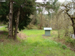 Photo of 0 UPPER SMITH RIVER RD, Drain, OR 97435 (MLS # 19349534)