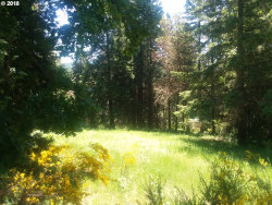 Photo of 0 UPPER SMITH RIVER RD, Drain, OR 97435 (MLS # 19383220)