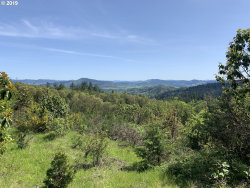 Photo of 0 WILDFLOWER LN, Oakland, OR 97462 (MLS # 19478168)