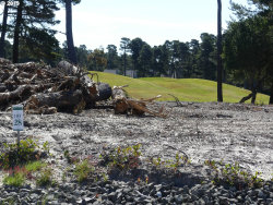 Photo of 28 TOURNAMENT DR , Unit 28, Florence, OR 97439 (MLS # 19555946)