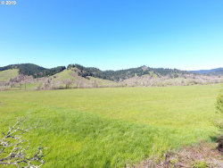 Photo of 1536 SCOTTS VALLEY RD, Yoncalla, OR 97499 (MLS # 19584445)
