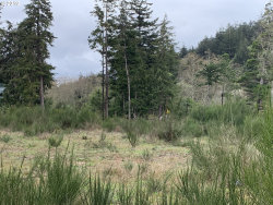 Photo of Twelfth, Port Orford, OR 97465 (MLS # 19584595)