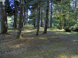Photo of Old Coast RD TL 800, Gold Beach, OR 97444 (MLS # 19656979)